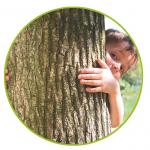 duurzaam ontwerp boom